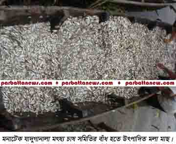Mahalchari Fish news Picture 2